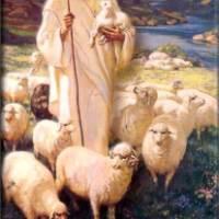 Cantos para la Eucaristía del día Domingo 21 de Abril : Buen Pastor : Letra, Acordes, Audios descargables y Pistas Mp3